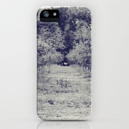 apple orchard iPhone Case
