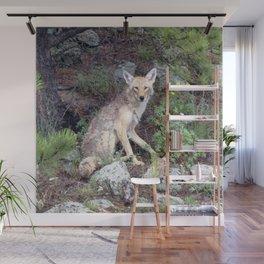 Watercolor Coyote 04, Estes Park, Colorado, Wild Forest Dog Wall Mural