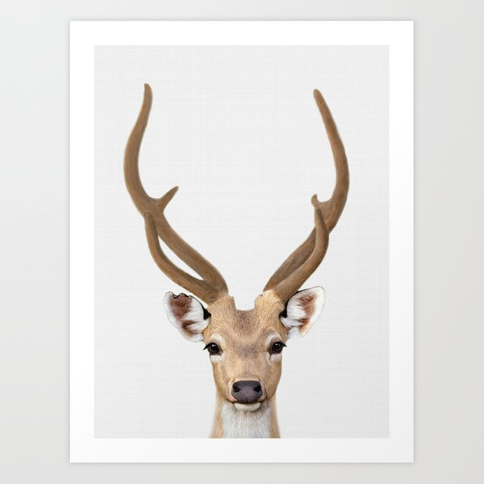 deer print  deer art  animal prints  nursery decor  animal