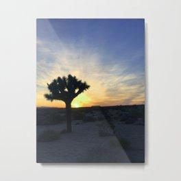 Taken by Trees Metal Print