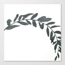 Botanical Olive Branch Canvas Print