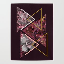 Wine Succulents #society6 #decor #buyart Poster