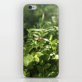 Underbrush wonders in the forest iPhone Skin