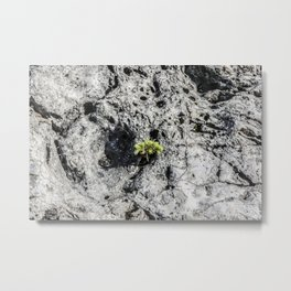 Life Will Find A Way Metal Print