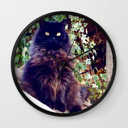 The King of cats Pomponio Mela Wall Clock