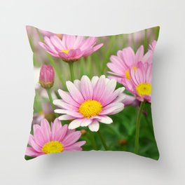 Daisy pink 090 Throw Pillow