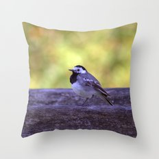 White Wagtail 4123 Throw Pillow