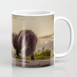 Stray cats Coffee Mug
