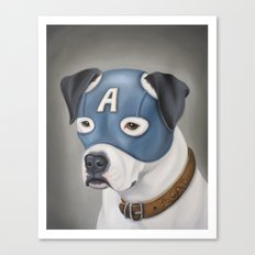 Captain America (American Bulldog) Canvas Print