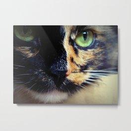 Lady Cat Metal Print