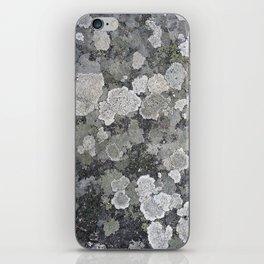 Buzy, Buzy Lichen iPhone Skin