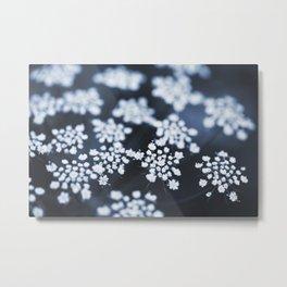 flower - blue lace Metal Print