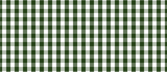 Dark Forest Green and White Gingham Check Coffee Mug