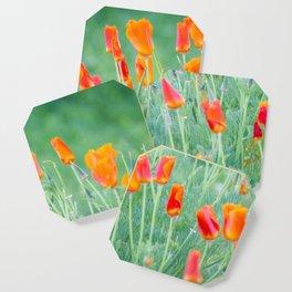 California Poppies Coaster