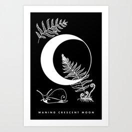 Waning Crescent Moon Art Print