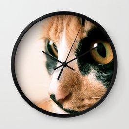 Thinking Cat Wall Clock