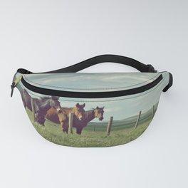 (Not So) Wild Horses Fanny Pack
