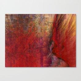 Rts  Canvas Print