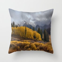 Colorado Fall Colors 2 Throw Pillow