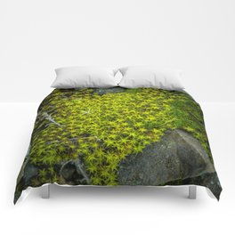 The tiny green forest Comforters