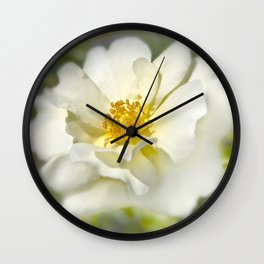 A white bloom. Wall Clock