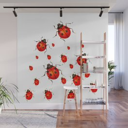 RED LADY BUGS  SWARM  ON WHITE COLOR Wall Mural