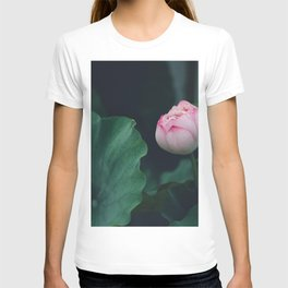 Flower Photography by Jerry Wang T-shirt