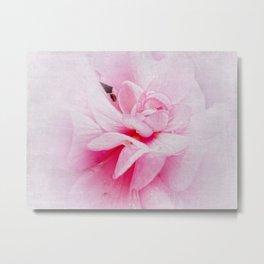 Pink Geranium Macro Metal Print