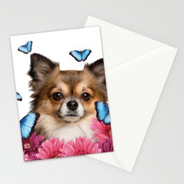 Chihauhau Dog with blue Morph Butterfloies and Gerbera Flowers Stationery Cards