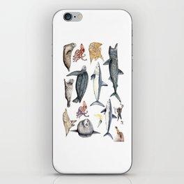 Marine wildlife iPhone Skin