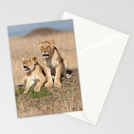 Young lions Stationery Cards