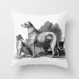 Anteater from Travels and Adventures in Southern Africa (1827) Throw Pillow