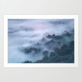 Morning fog rolling through trees Art Print