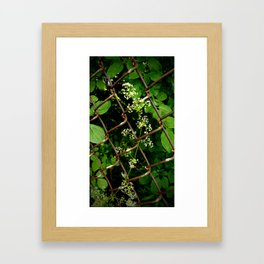 Flowers in the Chainlink Fence Framed Art Print
