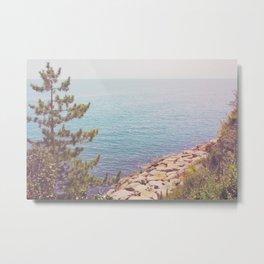 Ocean Beyond the Shore Metal Print