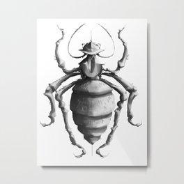 Bug Collection V Metal Print