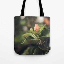 Capullo de Hibisco - Hibiscus bud Tote Bag