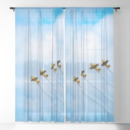 aircraft vintage airplanes aviation Sheer Curtain