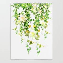 Watercolor Ivy Poster