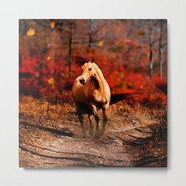 Horse Colour Metal Print