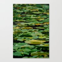 blanket Canvas Prints featuring Blanket by Brianna Noel Parrott