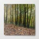 Autumn Textures by davidf8