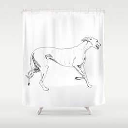 Greyhound Ink Drawing Shower Curtain