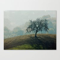 serenity Canvas Prints featuring Serenity by Monica Ortel ❖