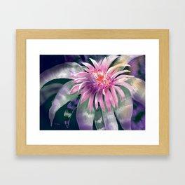 Tropical One Framed Art Print