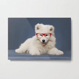 Little puppy Metal Print