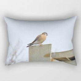 Sparrowhawk (Kestrel) Steel Span 11 Rectangular Pillow