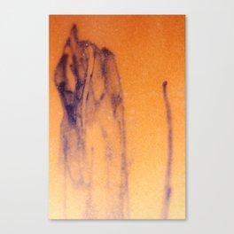 Idiossincrasia 7 Canvas Print