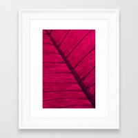 leaf Framed Art Prints featuring leaf by Claudia Drossert