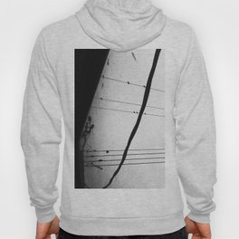 Birds on a Wire Hoody